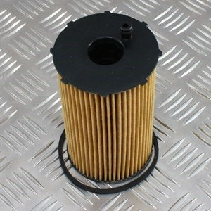 Range Rover Oil Filter-2.7 TDV6